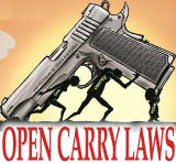 open carry laws